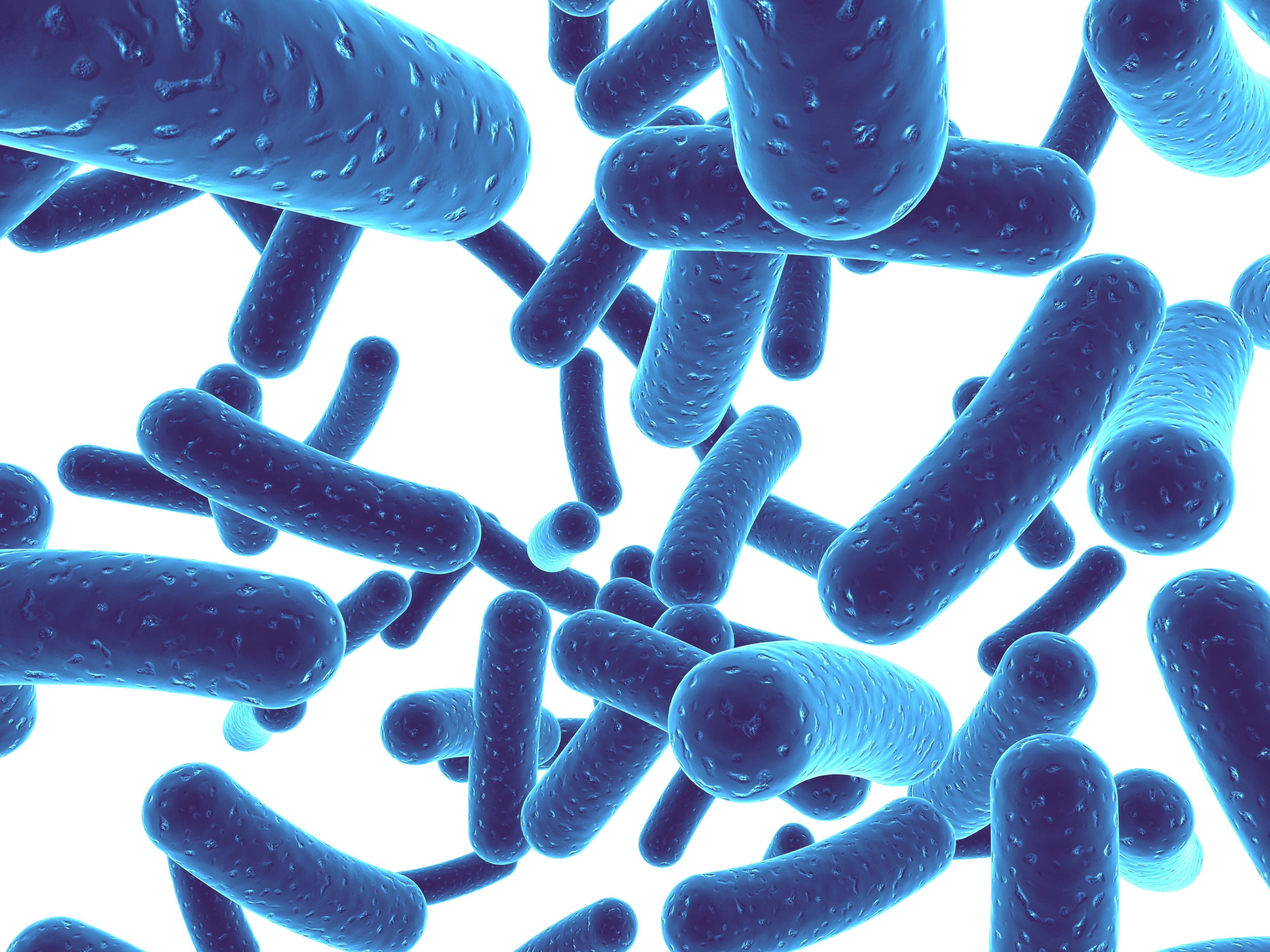Best Probiotic Brand