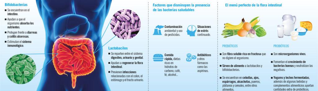 Bacterias Beneficiosas 07.06.14 1024×295